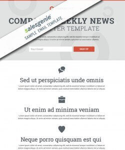 email template 7